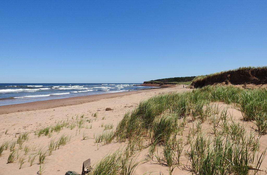 North Rustico dunes